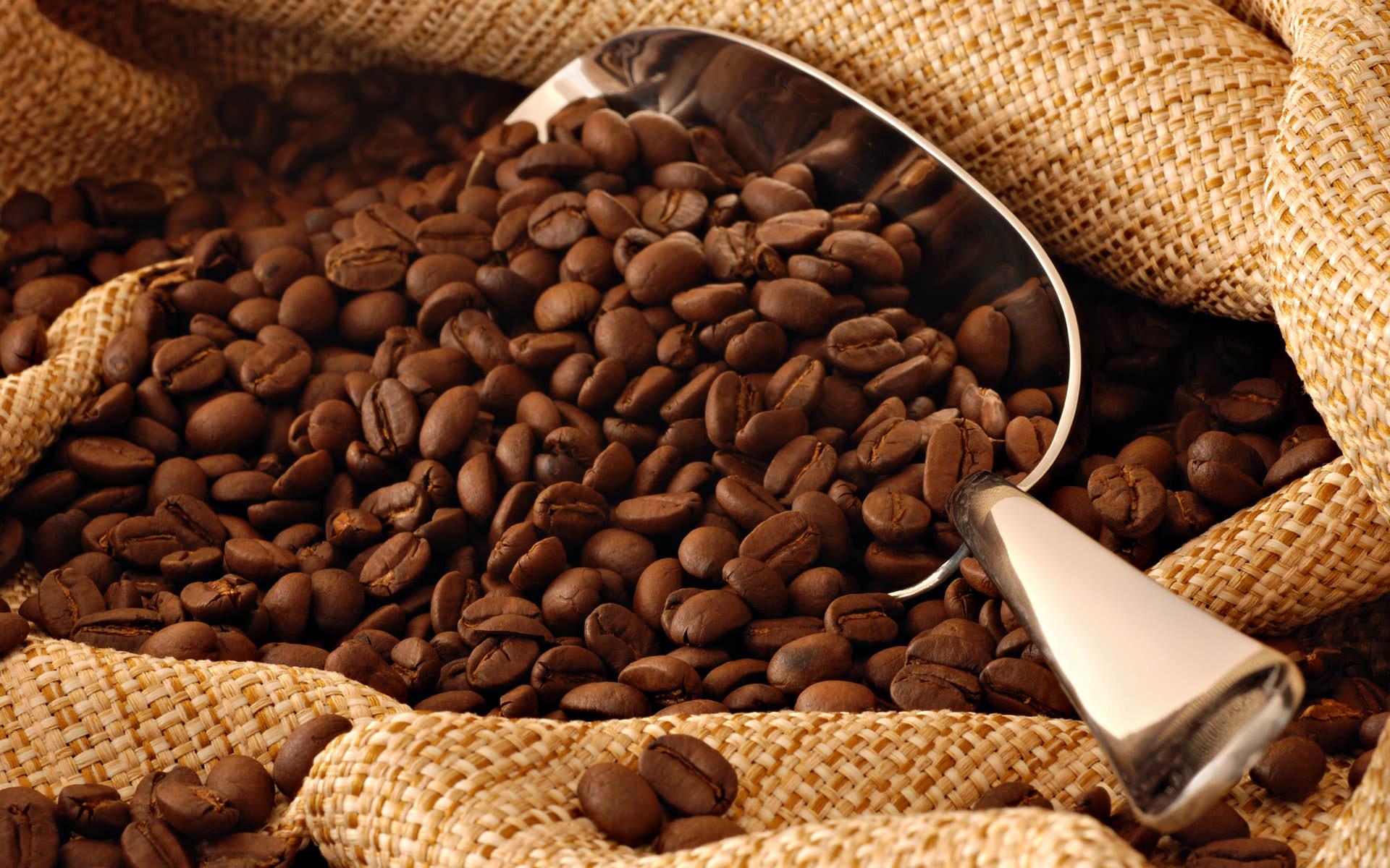 Kahvenin Beyin Üzerindeki Etkileri