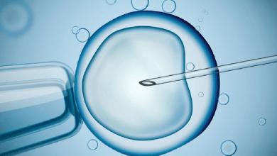 Tüp Bebek Tedavisinde Hamilelik Şansı Ne Kadardır?